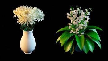دانلود آبجکت گل خانگی