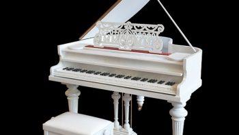 دانلود رایگان آبجکت آلات موسیقی ، فروشگاه و اسباب بازی