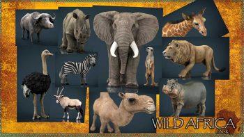 دانلود آبجکت حیوانات آفریقایی