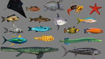 دانلود مدل سه بعدی جانوران دریایی انیمیت شده – ولوم چهارم