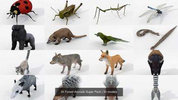 دانلود مدل سه بعدی حیوانات جنگلی