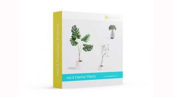 دانلود مدل سه بعدی گل و گیاهان آپارتمانی