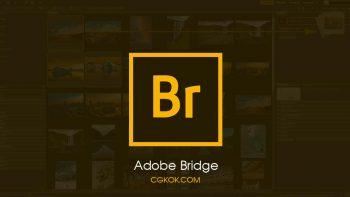 نرم افزار ادوبی بریج 2020 – Adobe Bridge 2020 v10.1.0.163 x64