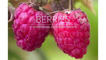 پریست عکس میوه در لایت روم – Berries Lr Presets