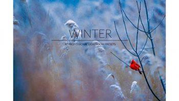 پریست تصاویر برفی برای لایت روم – Winter Lr Presets