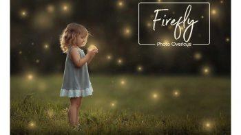 دانلود بک گراند ذرات نوری معلق در هوا Firefly Magical Overlays