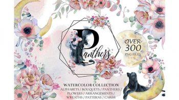 دانلود کلیپ آرت آبرنگی گل Panthers & Floral Watercolor set