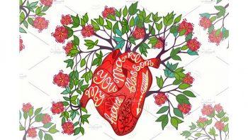 دانلود وکتور شکوفه قلب Blossom heart