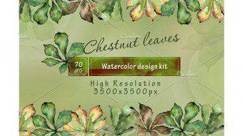 دانلود پترن آبرنگی برگ Chestnut leaves PNG watercolor set