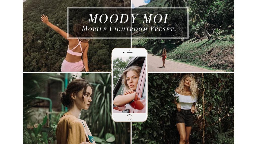 پریست لایت روم برای موبایل MOODY