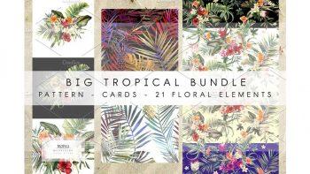 دانلود پترن گیاهان گرمسیری Big tropical bundle