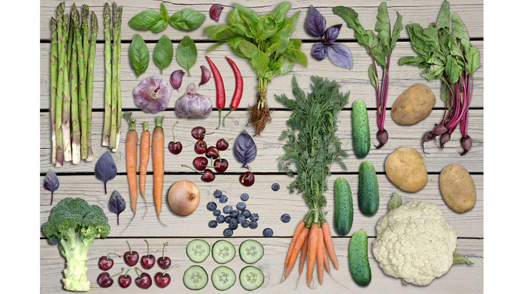 جعبه ابزار ساخت موکاپ سبزیجات