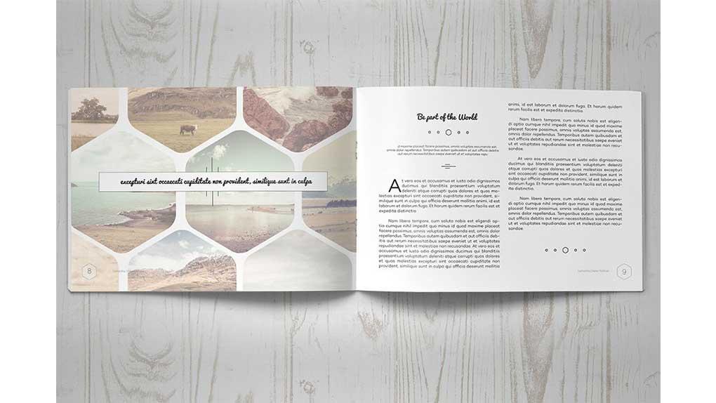 قالب ایندیزاین بروشور Multipurpose Clean Brochure