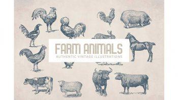 دانلود وکتور حیوانات مزرعه Vintage Farm Animals
