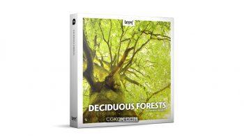 دانلود مجموعه افکت صوتی جنگل های Deciduous