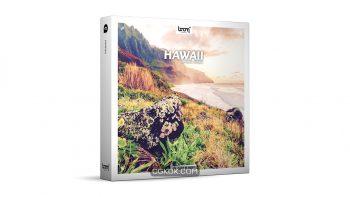 دانلود مجموعه افکت صوتی هاوایی Hawaii STEREO