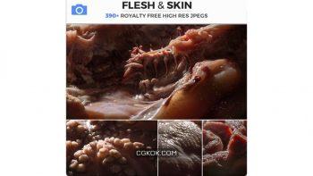 دانلود تصاویر رفرنس پوست گوشت