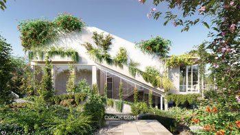 دانلود مدل سه بعدی درخت انگور و پیچک از Globe Plants
