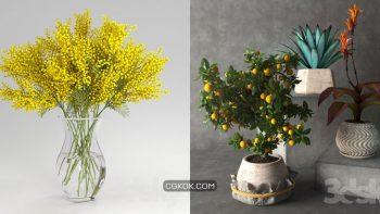 دانلود 80 مدل سه بعدی گل و گلدان از Pro 3DSky – مجموعه اول