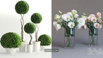 دانلود 76 مدل سه بعدی گل و گلدان از Pro 3DSky – مجموعه پنجم