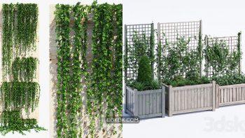 دانلود 70 مدل سه بعدی گل و گیاه زینتی