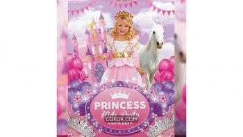 دانلود فایل لایه باز کارت دعوت جشن تولد Princess Kids Party Flyer